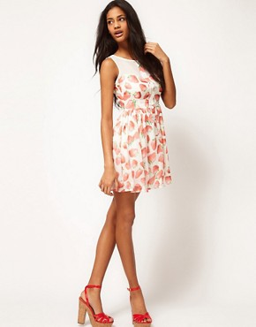 Image 4 ofPaprika Skater Dress In Strawberry Print