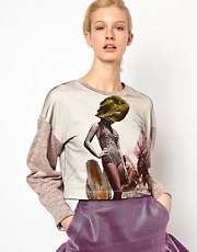 Louise Amstrup  Sweatshirt mit Chamleon-Motiv und Netzoberlage