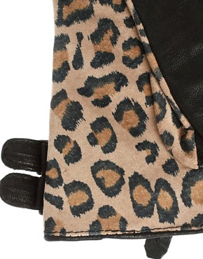 Image 2 ofMaison Scotch Leopard Gloves