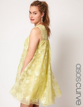 Image 1 ofASOS CURVE Exclusive Premium Swing Dress With Embroidery