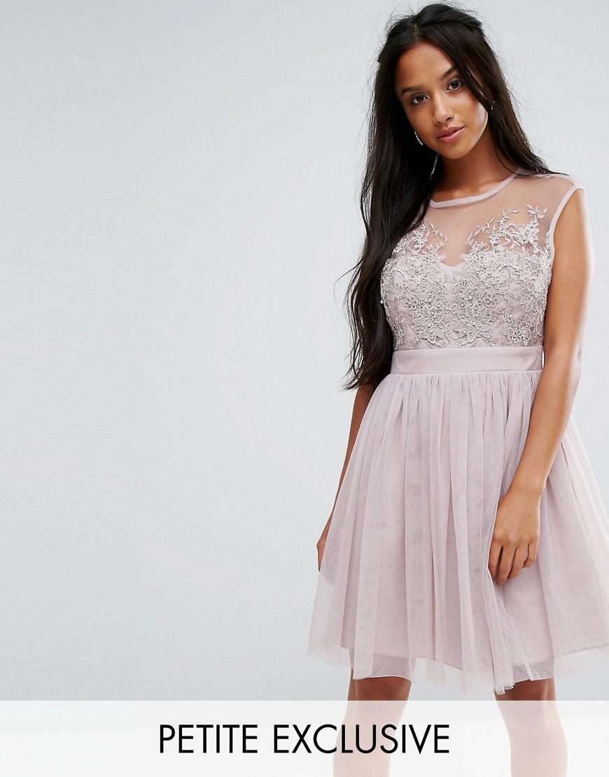 Little Mistress Petite Lace Applique Top Mini Tulle Prom Dress - Mink