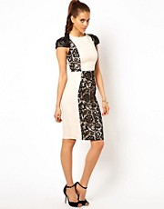 Paper Dolls Body-Conscious Dress with Lace Insert