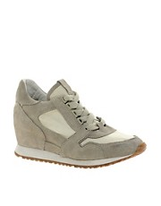 Ash Dean Ter Wedge Trainers