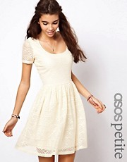 ASOS PETITE Skater Dress In Aztec Lace