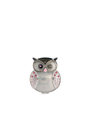 Image 1 ofASOS Exclusive Silver Owl Compact Mirror