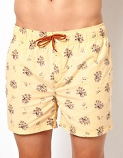 Humor Palm Tree Swim Shorts