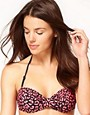Image 1 ofPaul Smith Halter Bandeau Bikini Top With  Leopard Print