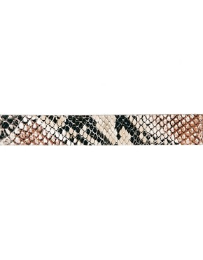 Image 4 ofASOS Snake Print Leather Belt