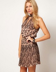 Oasis Lace & Animal Border Print Dress
