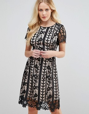 Coast Gressia Mini Dress in Cutwork Lace