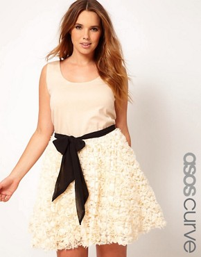 Image 1 ofASOS CURVE Party Dress With Rose Skater Skirt