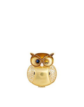 Image 1 ofASOS Exclusive Gold Owl Compact Mirror