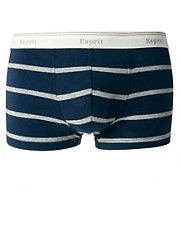 Esprit Ole Stripe Trunks