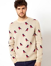 ASOS Bird Design Jumper