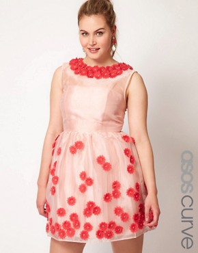 Image 1 ofASOS CURVE Premium Dress With Applique Flower Tulip