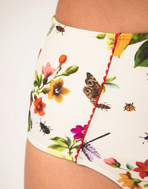 Image 3 ofTed Baker High Waisted Bikini Pant With Rose Bug Print
