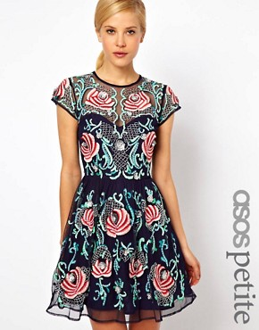 Image 1 ofASOS PETITE Exclusive Premium Skater Dress With Floral Embellishment