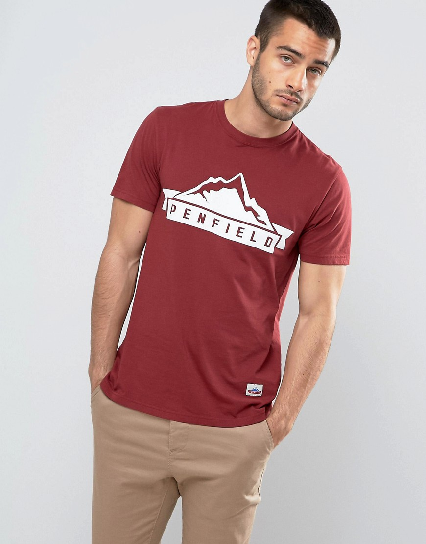 Penfield Mountain Logo T-Shirt Regular Fit in Burgundy - Burgundy