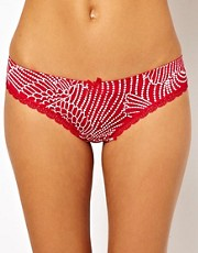 Evollove Bright Flight Thong