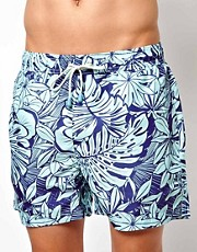 Shorts de bao clsicos con hojas gigantes de Oiler & Boiler