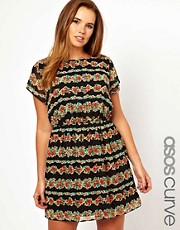 ASOS CURVE Exclusive Skater Dress In Stripe Floral