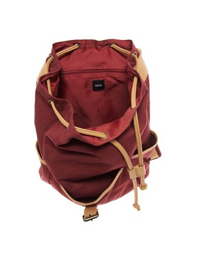 Image 2 ofASOS Canvas Backpack With Contrast Straps
