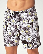 Franks Daisy Dreaming Swim Shorts
