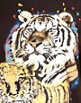 Image 3 ofASOS Tiger T-Shirt with Embroidered Sleeve
