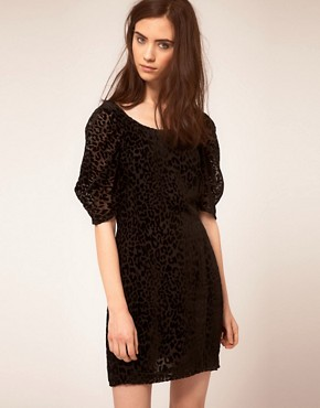 Image 1 ofDress Gallery Velvet Leopard Dress