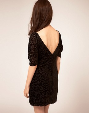 Image 2 ofDress Gallery Velvet Leopard Dress