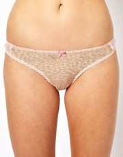 Mimi Holliday Sugar Squeeze Leopard Brief