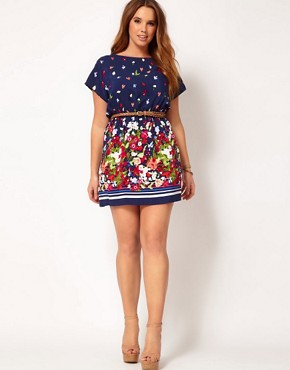 Image 4 ofASOS CURVE Exclusive Skater Dress With Floral Border