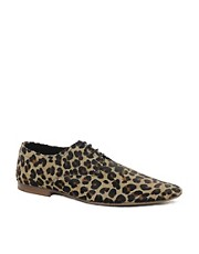 ASOS Shoes in Leopard Print