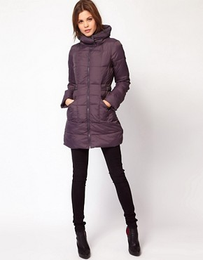 Image 4 ofWarehouse Padded Coat