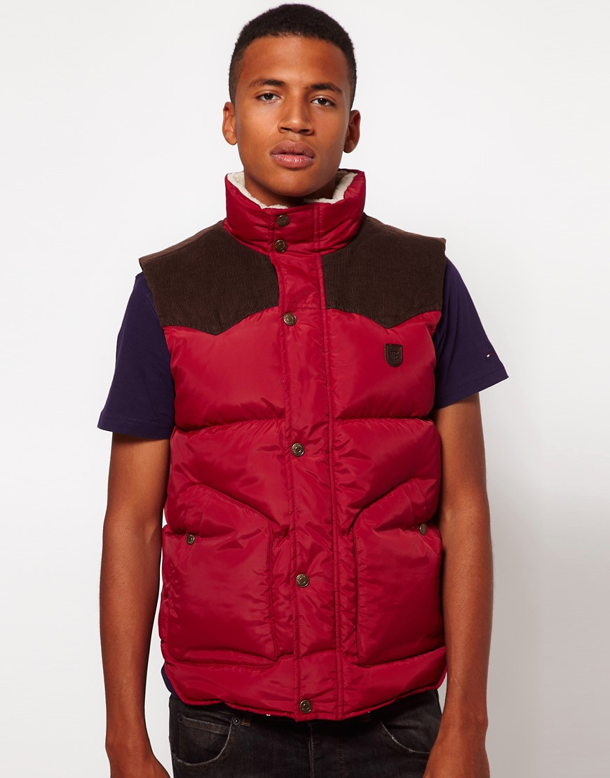 Image 1 of Hilfiger Denim Gilet