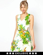 Oasis Floral Fit And Flare Dress