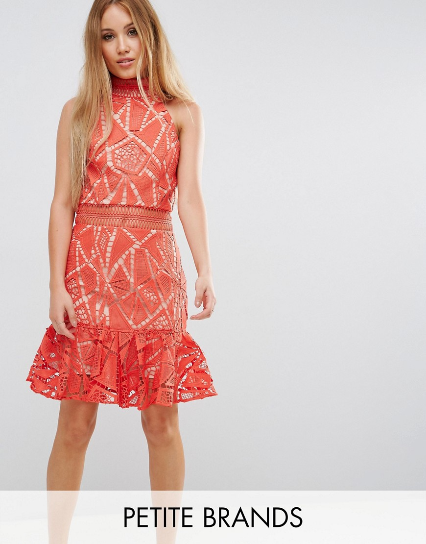Jarlo Petite All Over Lace High Neck Mini Prom - Orange
