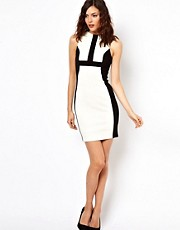 Warehouse Panelled Body-Conscious Dress