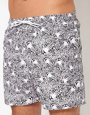 Franks Cheetah Swim Shorts
