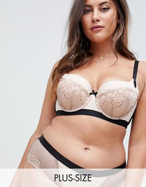 City Chic Nina Lace Bra