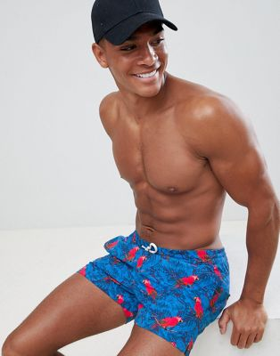 boohooMAN swim shorts with parrot print in blue