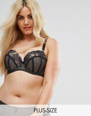 City Chic Prism Bra B - G Cup