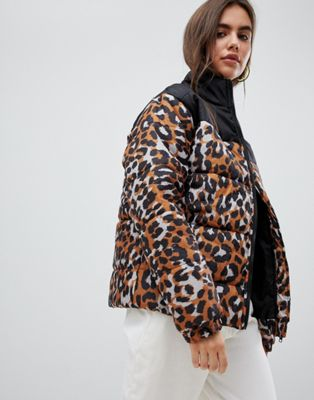Image 1 of Daisy Street padded jacket with ring pull in leopard print
