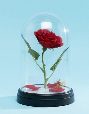 Disney - Enchanted Rose - Lampada