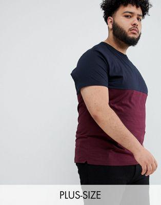Bild 1 von French Connection Plus – T-Shirt in kontrastierenden Blockfarben