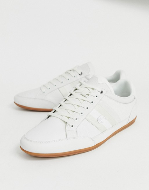 Image 1 of Lacoste Chaymon sneakers in white leather