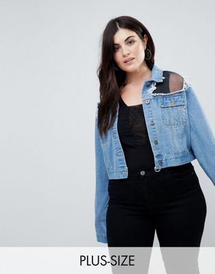 Image 1 of Liquor N Poker Plus Cropped Denim Jacket with Mesh Panel
