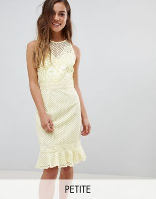 Little Mistress petite lace applique shift dress with peplum hem in lemon