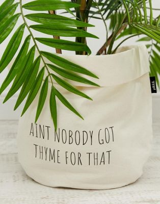 Moxon - Grote Aint nobody got thyme for that-plantenzak