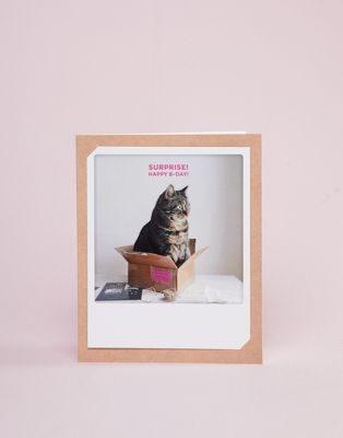 Pickmotion cat in a box birthday card